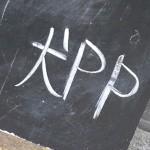 『犬PPカレー』~中津から九条へお引っ越しの犬PP☆~