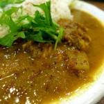『curry phakchi』~姫路の地で発見した正統派スパイスカレー☆~