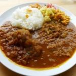 『Rice&Curry ラーマ』~西宮の秀逸スパイスカレーが大阪・土佐堀に移転OPEN☆~