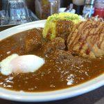 『肉カレー千葉屋』~辛さとシビレの二重奏に肉のインパクトが凄い!!!☆~