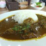 【閉店】『Spicy Curry Lucy』~辛味と旨味のシンプルな攻め!!堺筋本町に辛口スパイシーカレー発見☆~