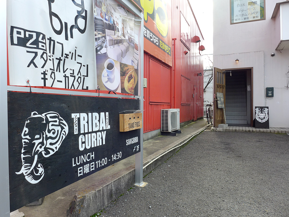 tribal-curry20161202